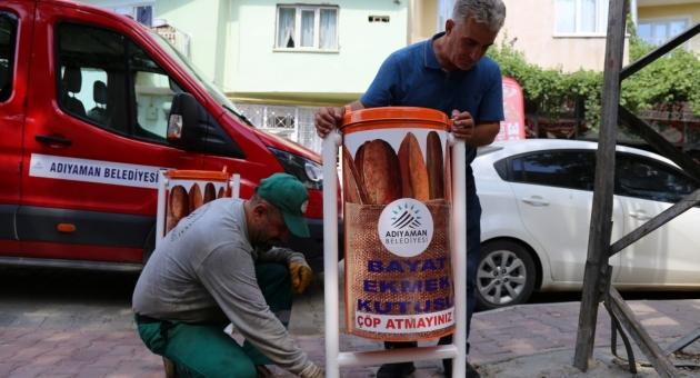 Adıyaman Belediyesi'nden Sokak Hayvanlarına Yönelik Çalışmalar Devam Ediyor