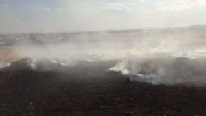 Adıyaman'da 15 ton saman balyası kül oldu - Videolu Haber