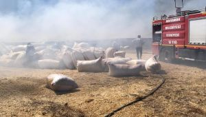 Adıyaman'da 6 dönüm anız ve saman yandı