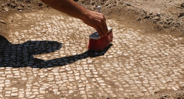 Adıyaman'da Balıkçılar, 6'ıncı Yüzyıla Ait Mozaik Buldu