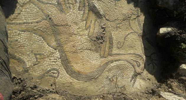 Adıyaman'da Bizans Dönemine Ait Ördek Figürlü Mozaik Bulundu