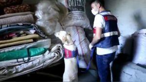 Adıyaman'da PKK'ya finans sağlayan 1 şüpheli tutuklandı - Videolu Haber