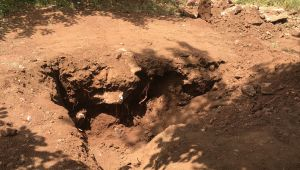 Adıyaman'da toprağa gömülü kafatası ve insan kemikleri bulundu - Videolu Haber