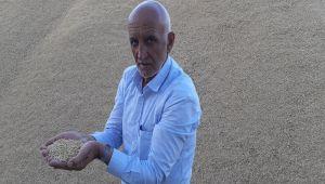 Adıyamanlı çiftçi AR-GE'li tohumla arpada rekolteyi iki katına çıkardı