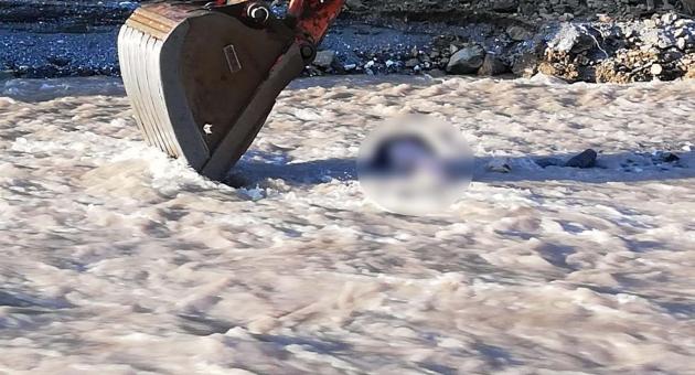 Asma Köprüden Düşen Çiftçi Suda Hayatını Kaybetti