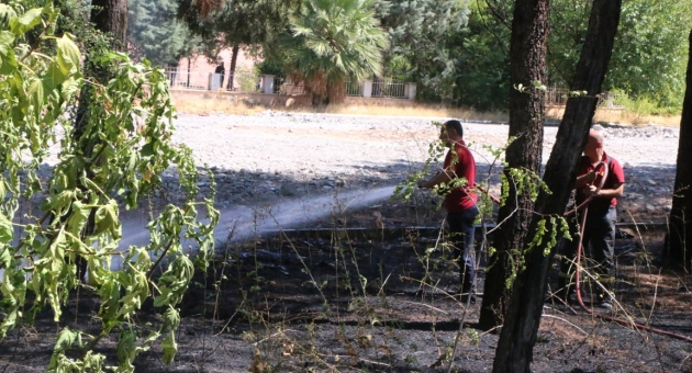Bahçe Yangını Büyümeden Söndürüldü - Videolu Haber