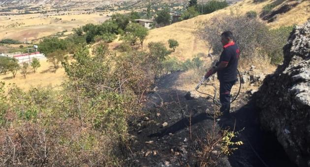 Besni'de Bahçede Çıkan Yangın Paniğe Neden Oldu