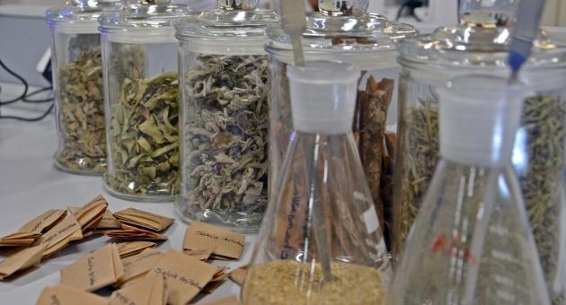Bitki Çaylarında Korkutan Laboratuvar Sonuçları: Böcek Parçaları, Kaş Ve Kirpik Bulundu