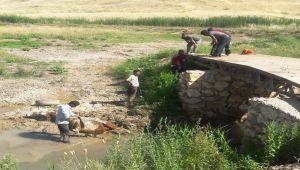 Çamura saplanan ineği itfaiye ekipleri kurtardı