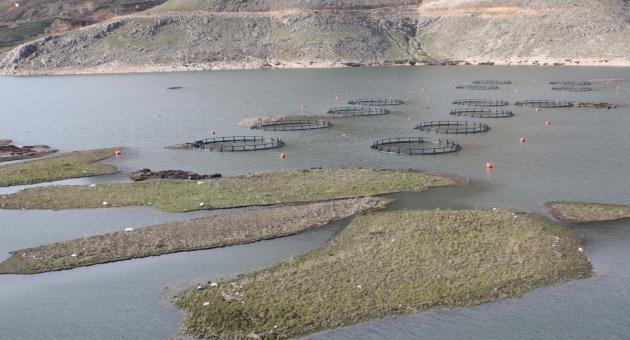 Çelikhan'da Yüzen Adalar Yüzmeye Başladı  - Videolu Haber
