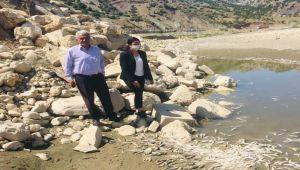 CHP'li Köseler, balık ölümlerin yaşandığı bölgede incelemede bulundu