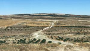 DSİ Müdürü Aydın: 31 Bin Dekar Arazi Modern Tekniklerle Sulamaya Açılacak
