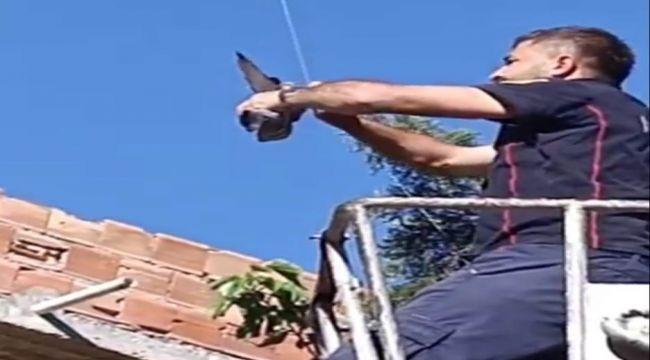 Elektrik tellerine takılan güvercini itfaiye ekipleri kurtardı