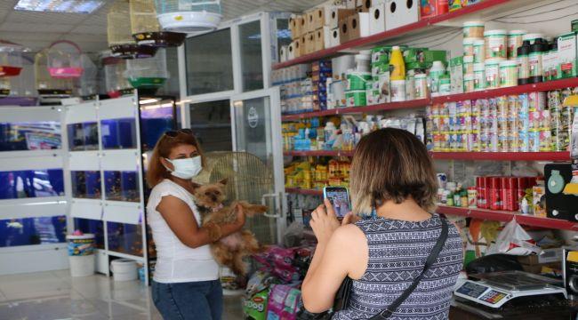 Evcil hayvan ithalatı açıldı, fiyatlar hala 3 katı - Videolu Haber