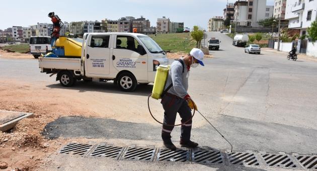 Gaziantep Büyükşehir, İlaçlama Çalışmalarına Hız Verdi
