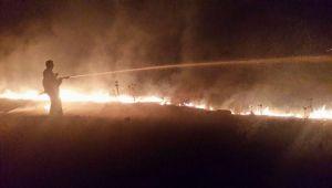 Gece buğday tarlasında çıkan yangın köyde panik yarattı