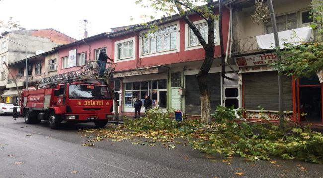 Gölbaşı Belediyesi Ağaç Budama Çalışmaları Sürüyor
