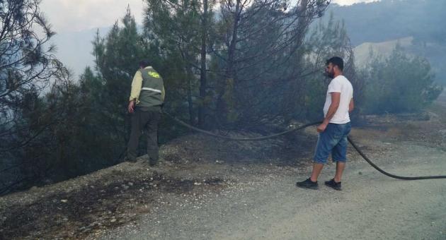 Gölbaşı'nda Ormanlık Alanda Çıkan Yangın Söndürüldü