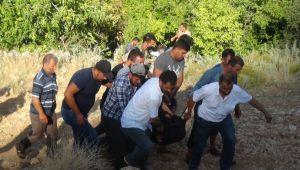 Kestiği ağacın altında kalan çiftçi öldü