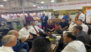 Milletvekili Tutdere: Çiftçiler çaresiz bırakıldı, tohumlar depoda kaldı