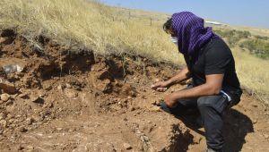 Perre Antik Kent'te kazı çalışmaları 11 yıl sonra yeniden başladı - Videolu Haber