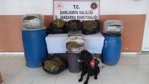 Şanlıurfa'da Eş Zamanlı Uyuşturucu Operasyonu: 4 Tutuklu