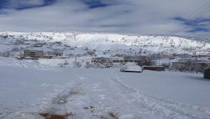 Sincik'te Tipi ve Kar Yağışı Hayatı Olumsuz Etkiliyor