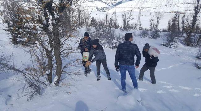 Sincik'te Yaban Hayvanları İçin Yabana Yem Bırakıldı