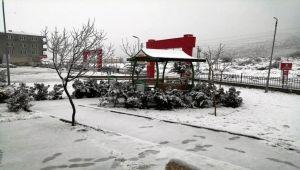 Sincik'te Yoğun Kar Yağışı Etkili Oldu