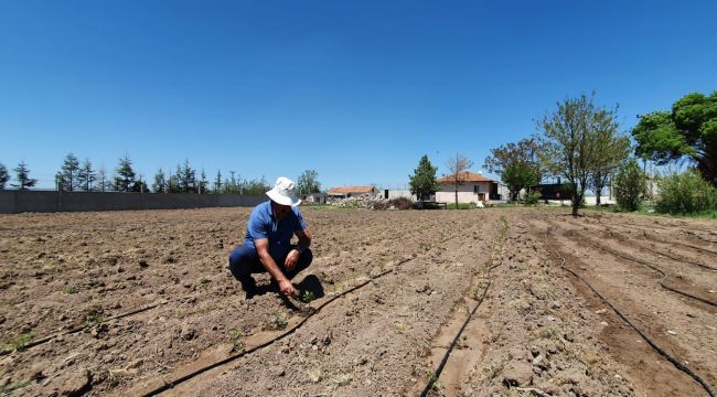 TÜDKİYEB Genel Başkanı Çelik: Türkiye'deki tarım arazilerinin en önemli sorunu tarım dışı kullanımdır