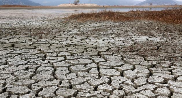 Türkiye'de Arazilerin Yüzde 47'si Çölleşme Riski Altında