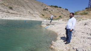 Türkiye'de bir ilki gerçekleştiren girişimci koy kapatarak balık üretti